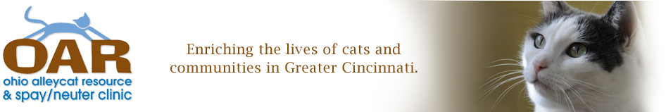 Ohio Alleycat Resource & Spay/Neuter Clinic