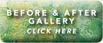 Before and After Gallery Button