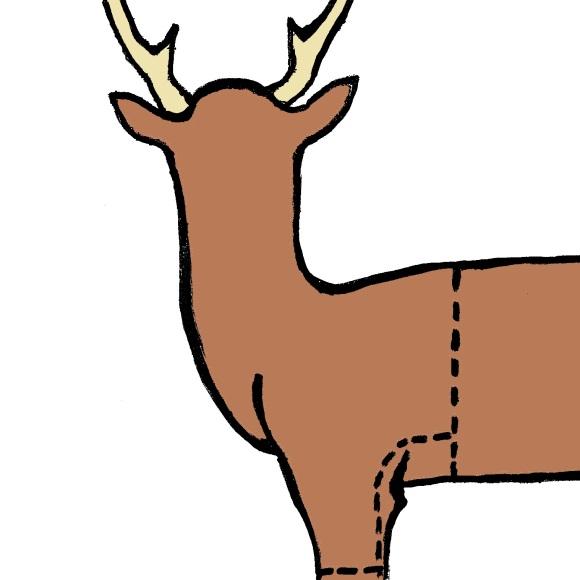 rocke wildlife studio peoria eureka area taxidermy field carediagram 1big game, such as deer, should immediately be field dressed
