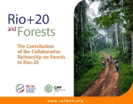 Rio+20_Forests_booklet