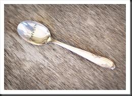 Einzelstück - Sprechendes Silber  (3)
