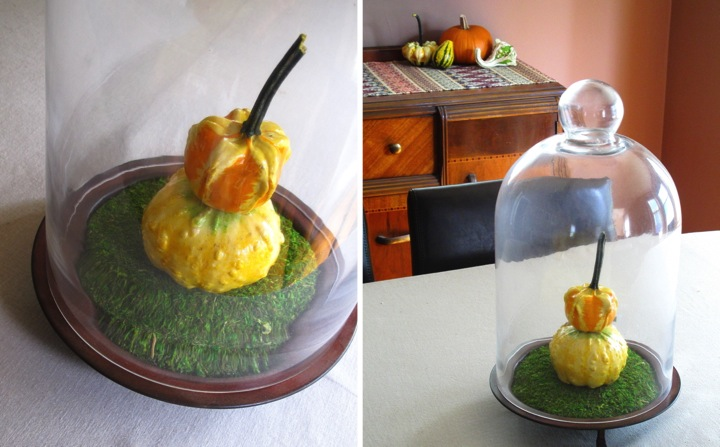 Fall gourd table centerpiece homeandawaywithlisa