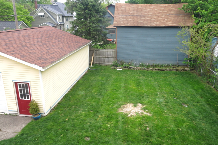 Backyard Hill Removal : By 810 the stump and the surrounding roots which has also reached the