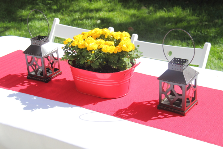 Backyard celebration party blog homeandawaywithlisa - Coleman small spaces bbq decoration ...
