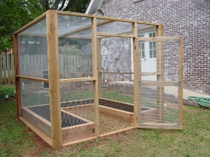 Meet the Fortress Our Answer to Pesky Varmints Microfarm