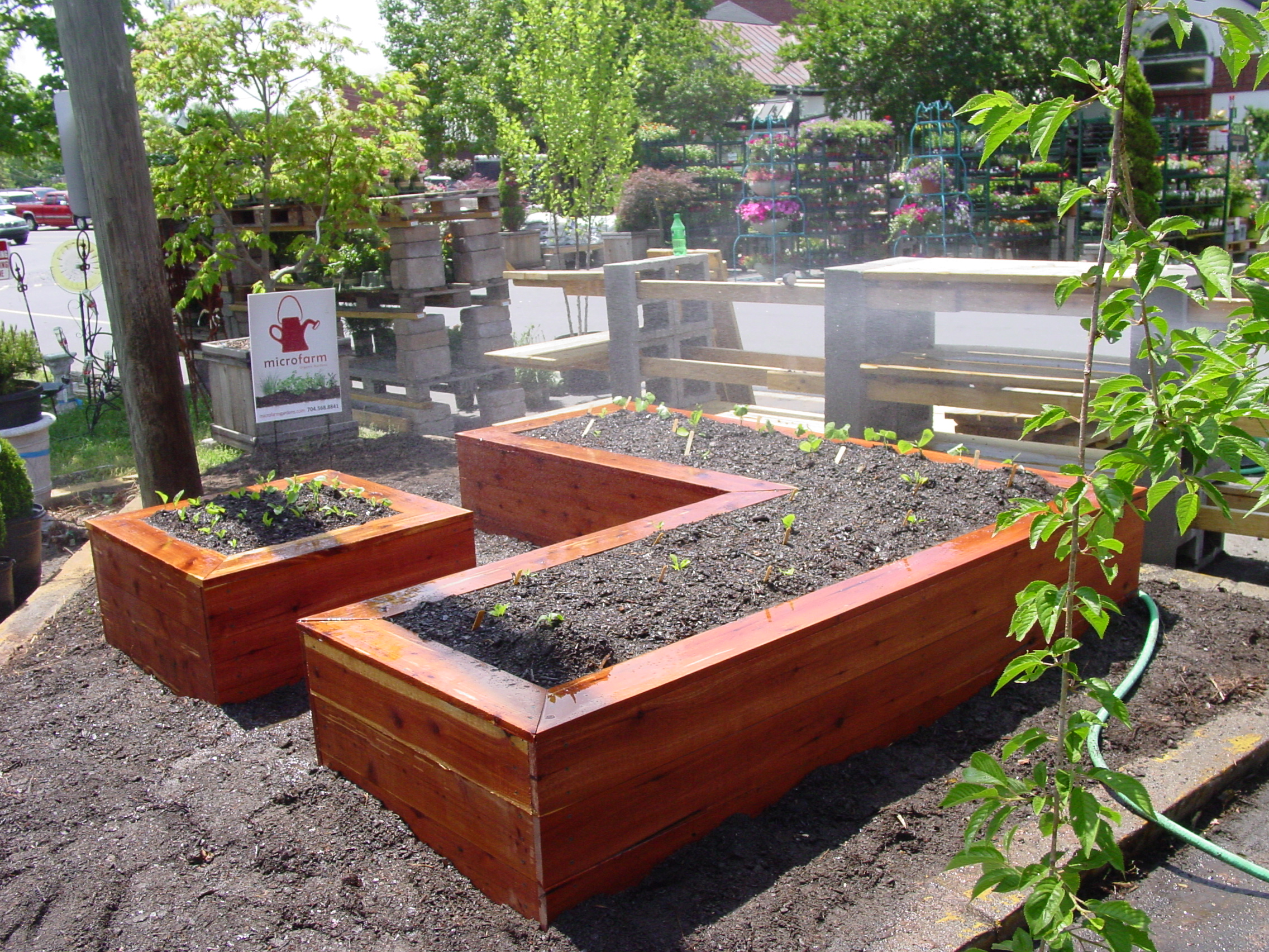 bed herb beds garden divided raised ideas hative