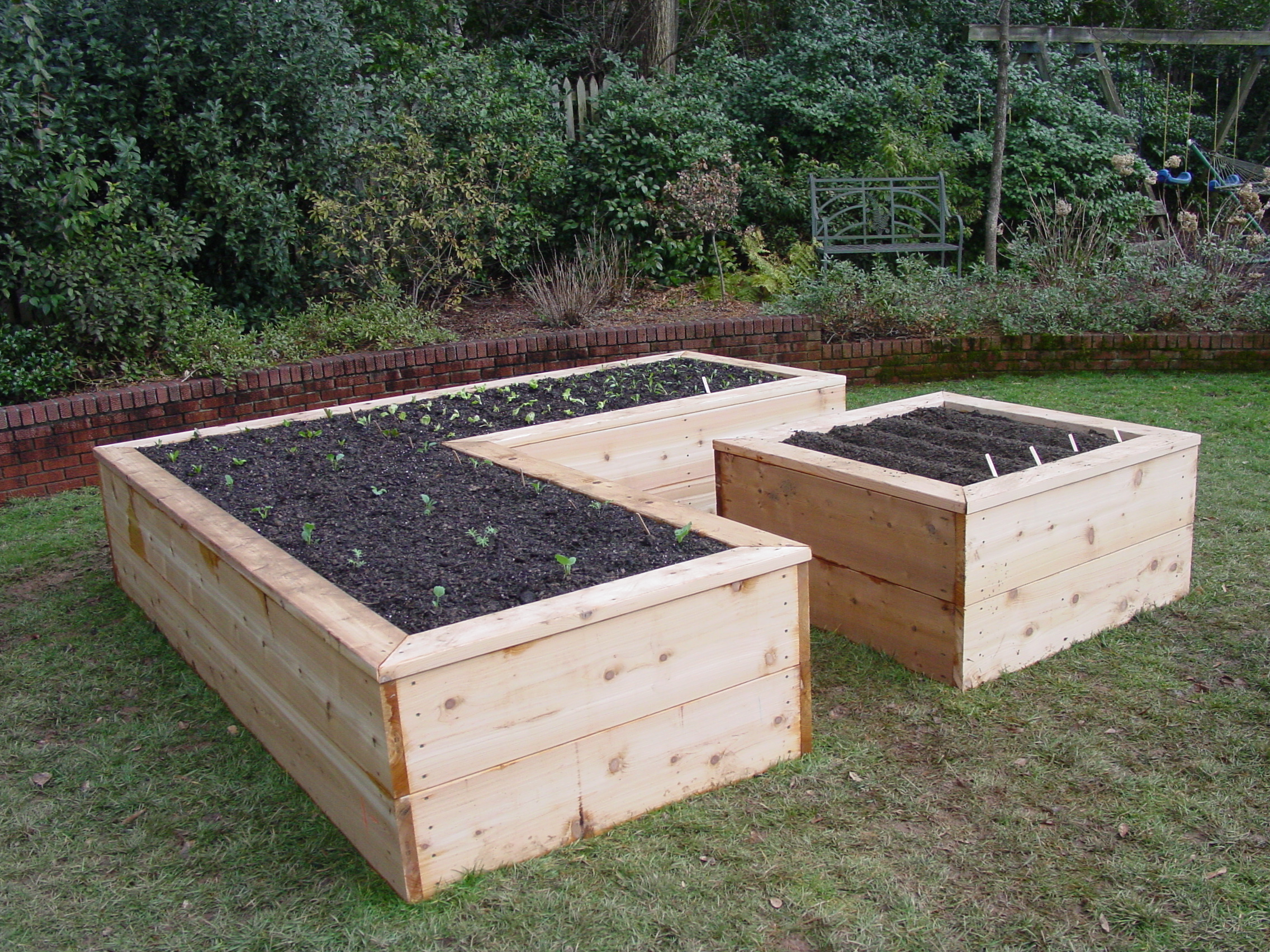 Raised garden beds designs cedar timbers raised beds for Garden designs with raised beds