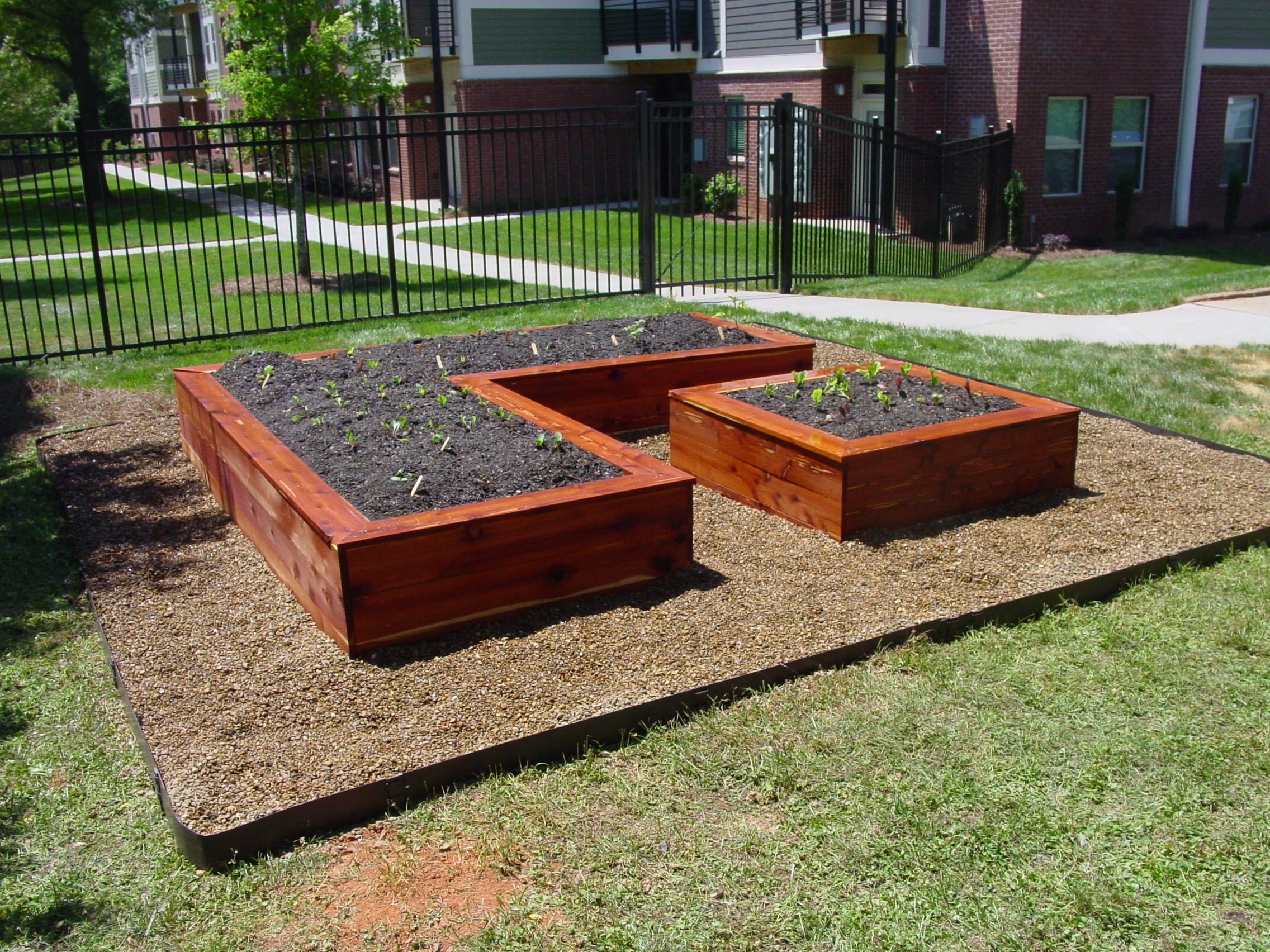 Attractive Kitchen Garden Raised Beds