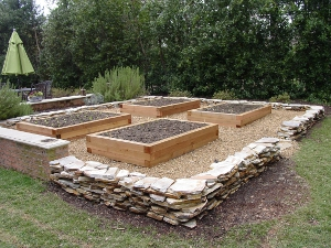 Raised Garden Bed Design 3 fill in boards to ground saw post tops flush to sides Cedar Timbers Raised Beds