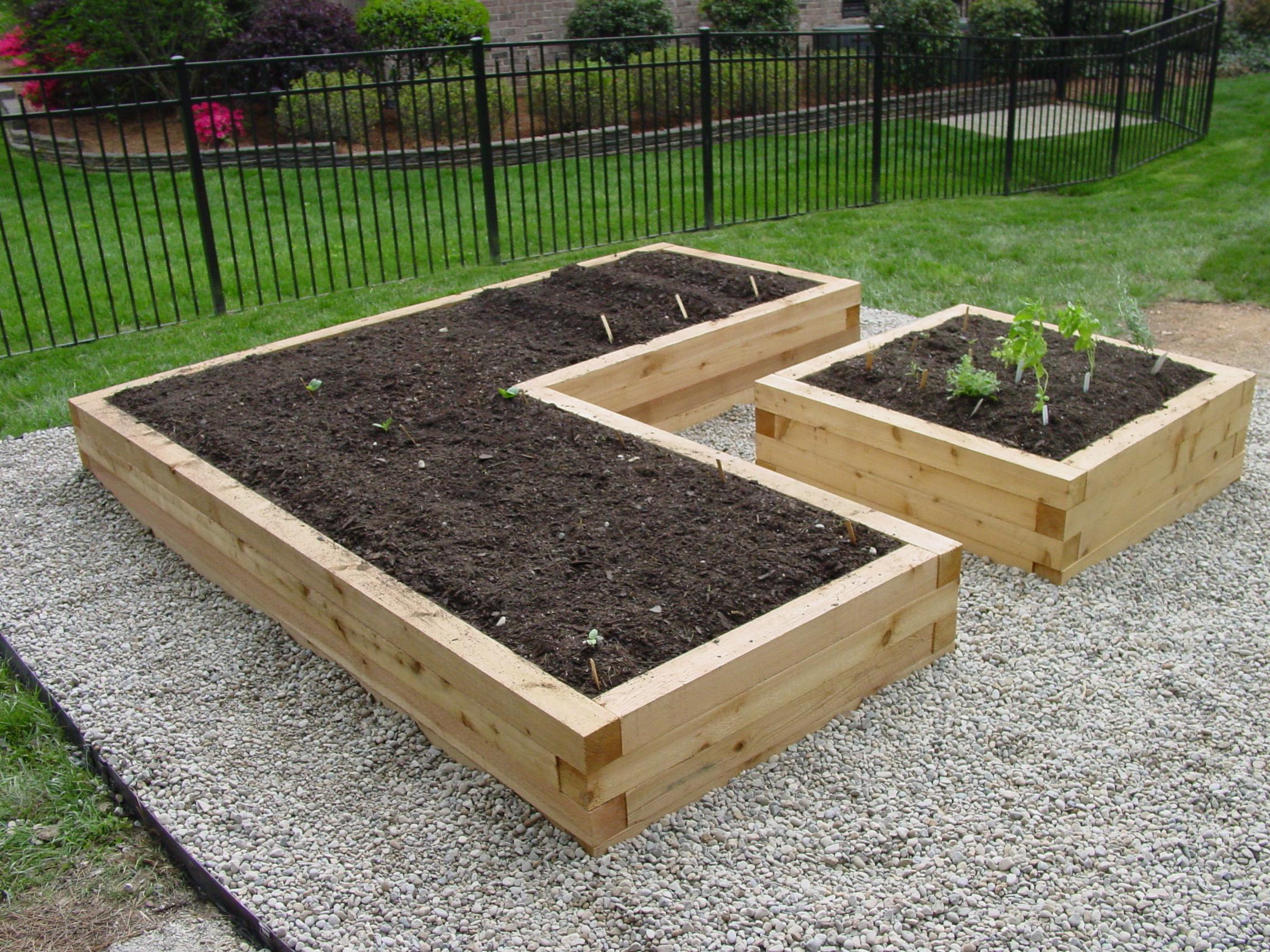 Ordinaire 1000 Ideas About Raised Garden Bed Design On Pinterest Raised Garden Beds  Raised Gardens And Vegetable