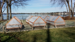 not only can the microfarm gable cedar cold frame design protect fall gardens well into winter but they also give growers a head start on early spring