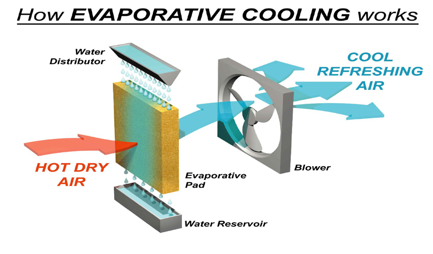 Evaporative Cooler How It Works : Cool down your greenhouse this summer microfarm organic