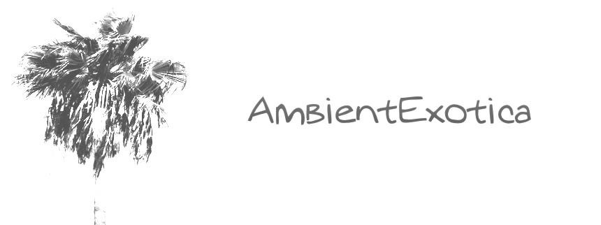 013 – G E S  – Circulations - AmbientExotica com – Music Reviews of