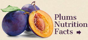a literary analysis of wild plums The very first line, the word plum is delicious, shows how appealing the writer thinks the plum is you can see this plum in lines 6 through 8 where it states, taut skin pierced, bitten, provoked into juice, and tart flesh.