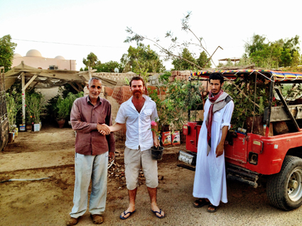 Buying plants in Egypt