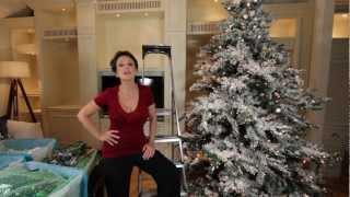 San Diego Designer Rebecca Robeson's Christmas Video House Tour