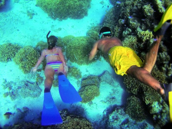 Paul Gauguin Cruises picture of a couple snorkeling on a Cruise