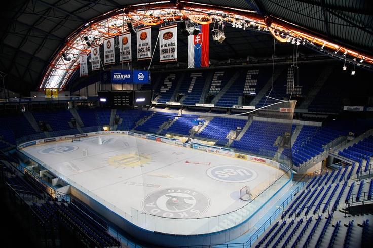 Hbha Hellenic Ball Hockey Association News 2019 World