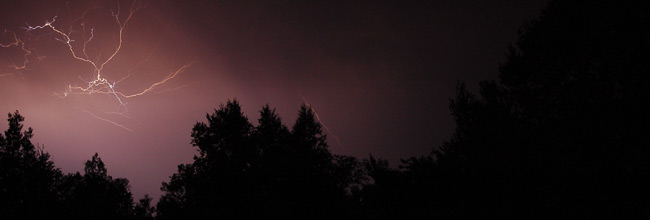 Photo of lightening in purple night storm sky with black tree silhouettes.