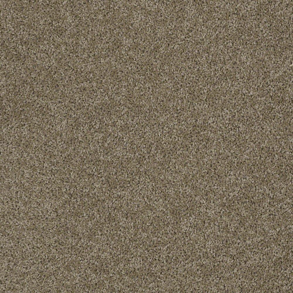 We Got You Covered Carpet Vinyl Plank Carpet