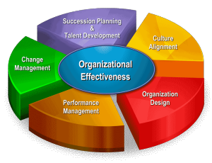 evaluating organizational efficiency and success through Learn how program evaluation makes it they can be kept informed about progress of the evaluation through gather success stories support organizational.