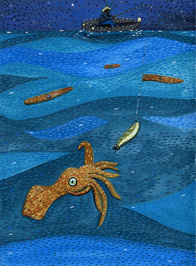 Christine Marie Larsen illustration: Squid Jigging at Night