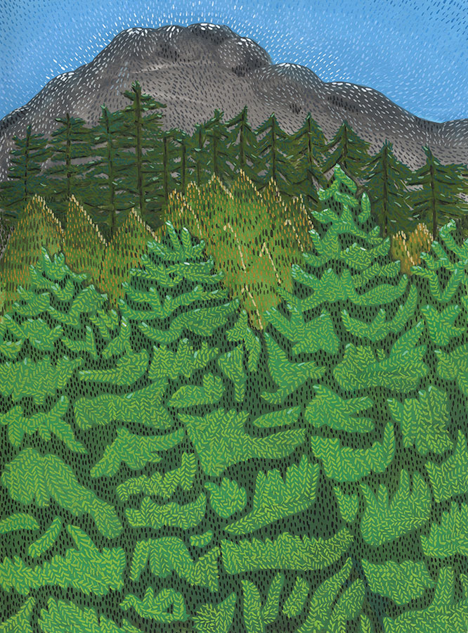 Christine Marie Larsen illustration of a greenbelt. Forest trees mountain.