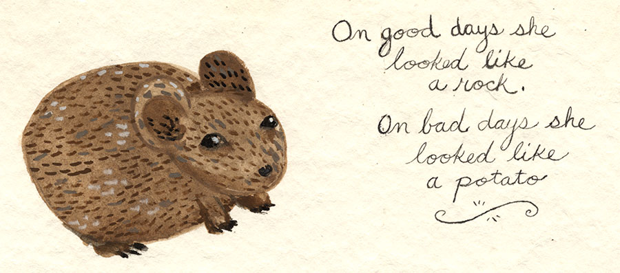 Christine Marie Larsen Illustration of a Pika