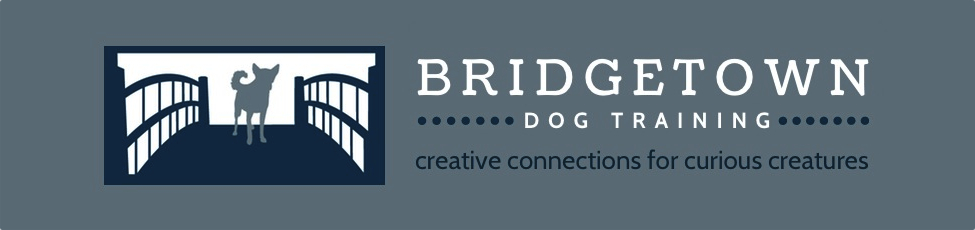 Bridgetown Dog Training