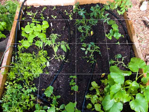 Build a square foot garden garden ideas and design blog for Square foot garden designs