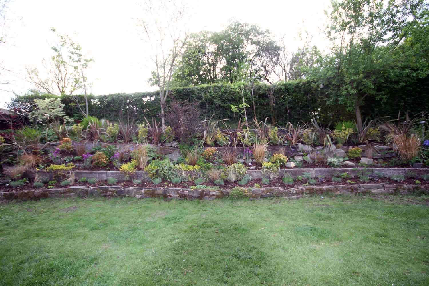Sloping garden design in craven arms hornby garden for A garden design