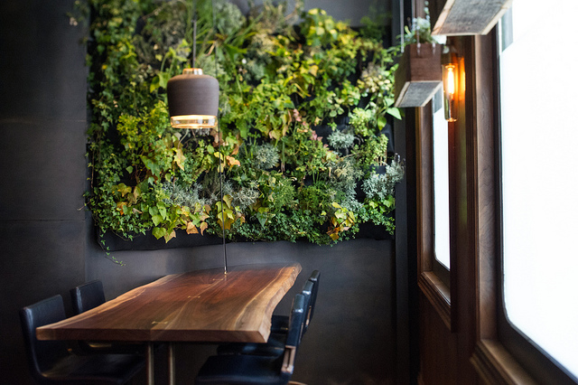 The foraging pays off three stars for atera news for Casas con jardin interior