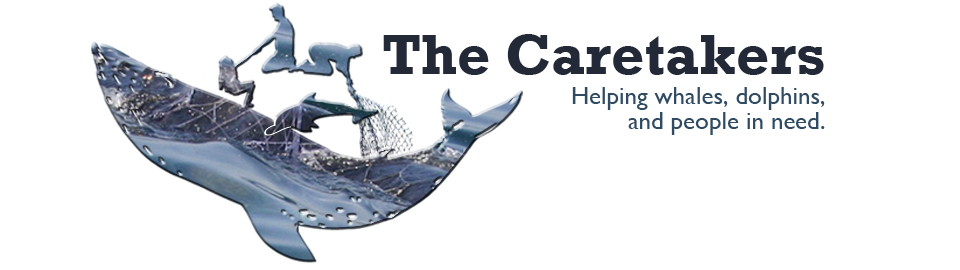 The Caretakers: Helping whales, dolphins, and people in need.