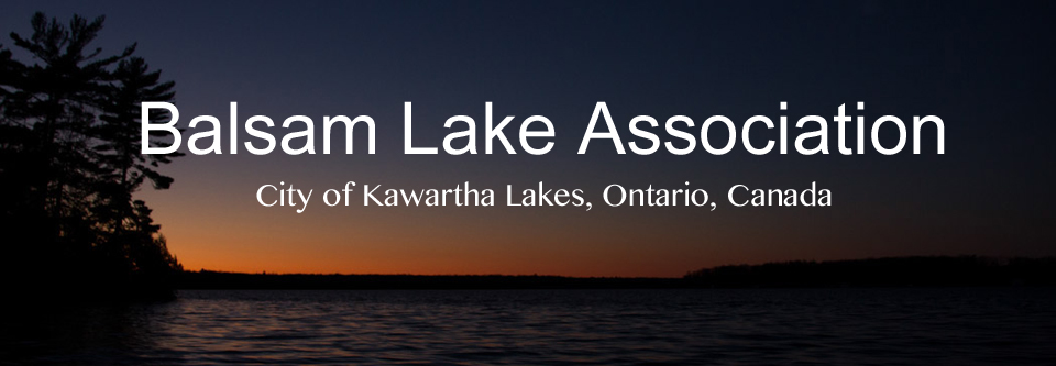 Balsam Lake Association