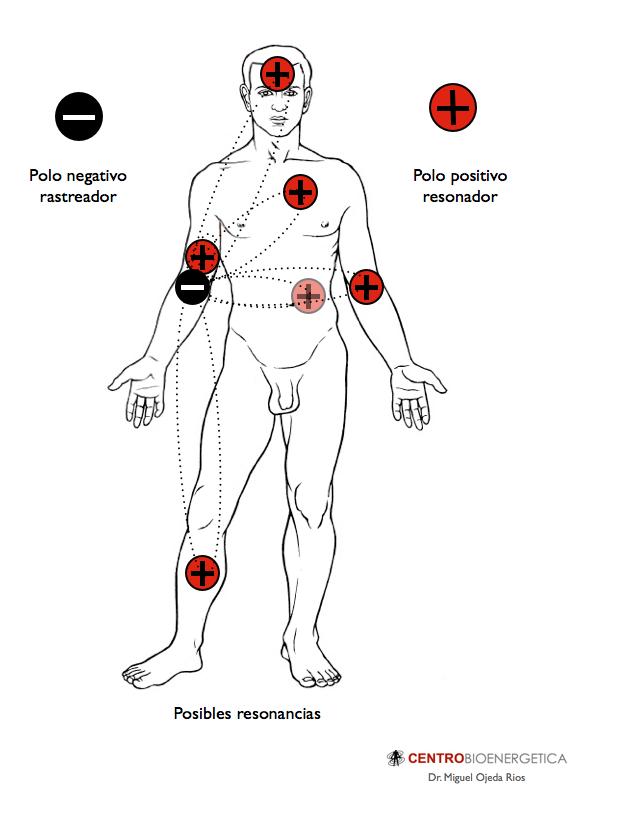 Par Biomagnético - centrobioenergetica