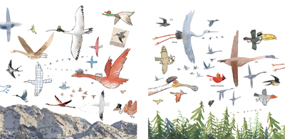 Some birds fly North, some birds fly South, Gus Gordon Illustration, Print for Sale