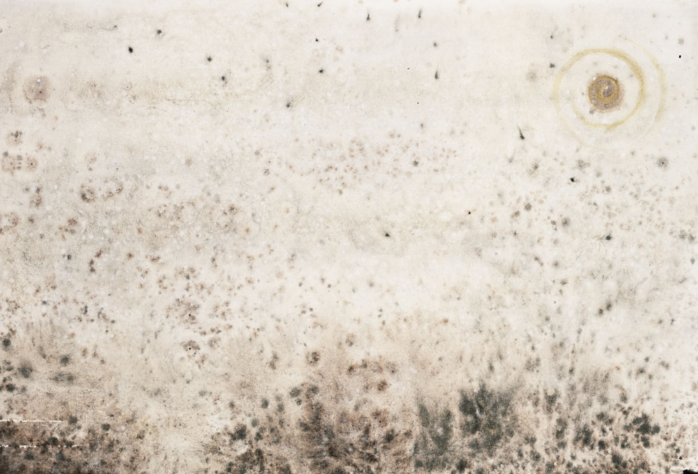 dry-summer-field-Sumi.jpg