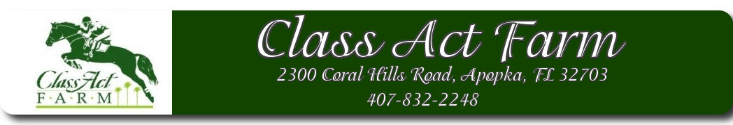 Class Act Farm - Boarding, Riding Lessons & Training for Orlando Area