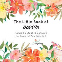 The Little Book of Bloom
