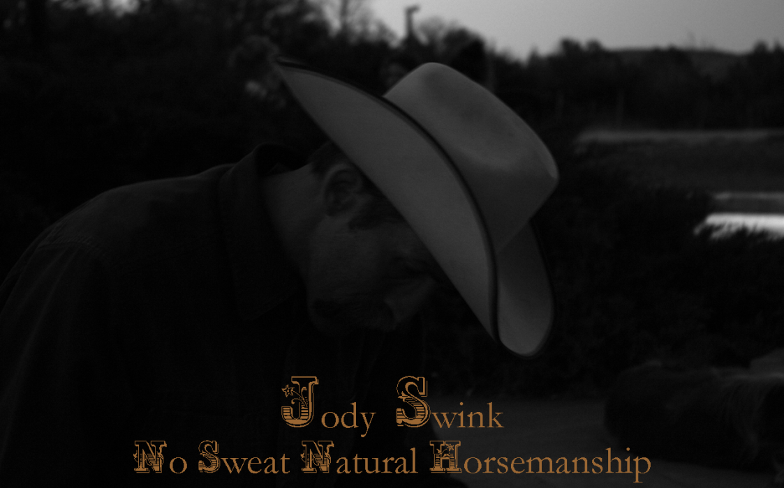 Jody Swink No Sweat Natural Horsemanship