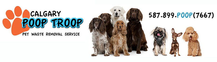 Calgary Pet Waste Removal and Pooper Scooper Service