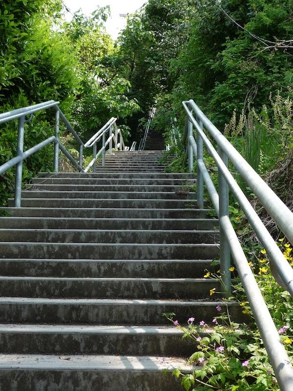 Best Stairway Workouts: West Seattle - Blog & Links