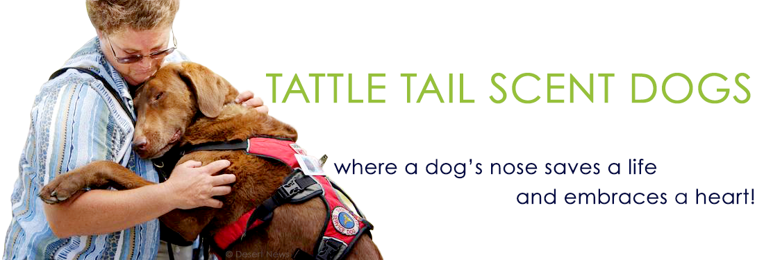 Tattle Tail Scent Dogs