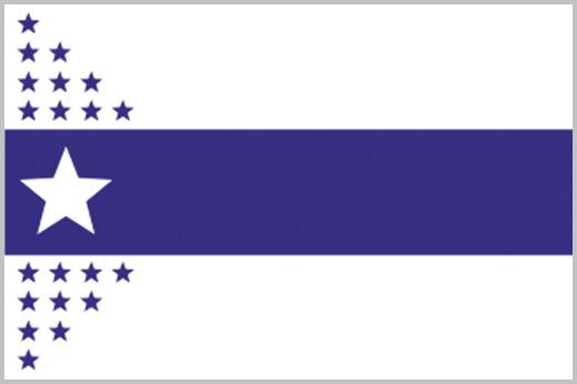 ccad61739f42 Rice s 1917 Chicago City Flag Design