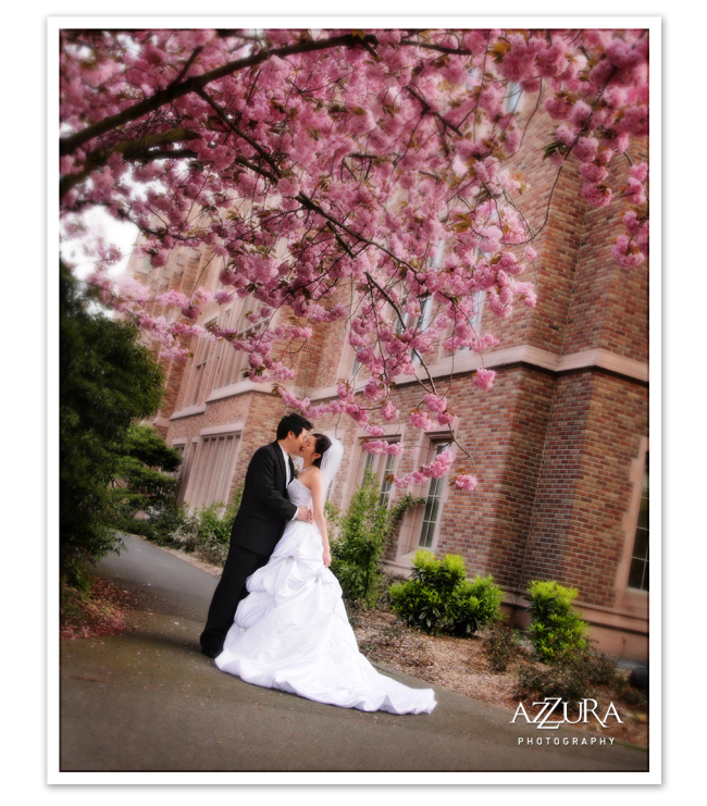 Azzura_Photography_6_9_8_04.jpg