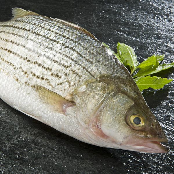 kanaloaseafood - Chef Specialties