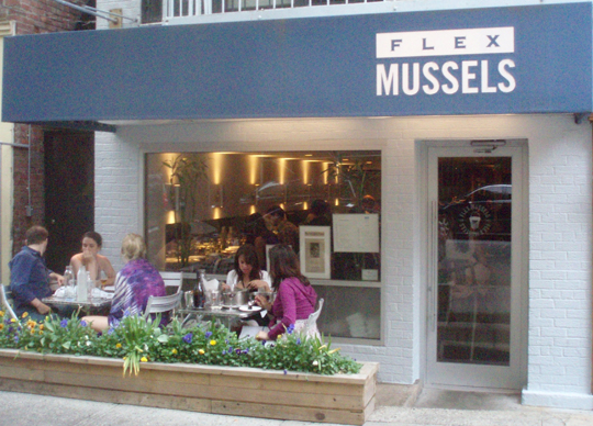 Flex Mussels Home New York Journal