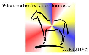 What color is your horse really? Determining your horse's personality type