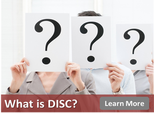 DISC Profile, DISC Personality Test, DISC Test, DISC Assessment