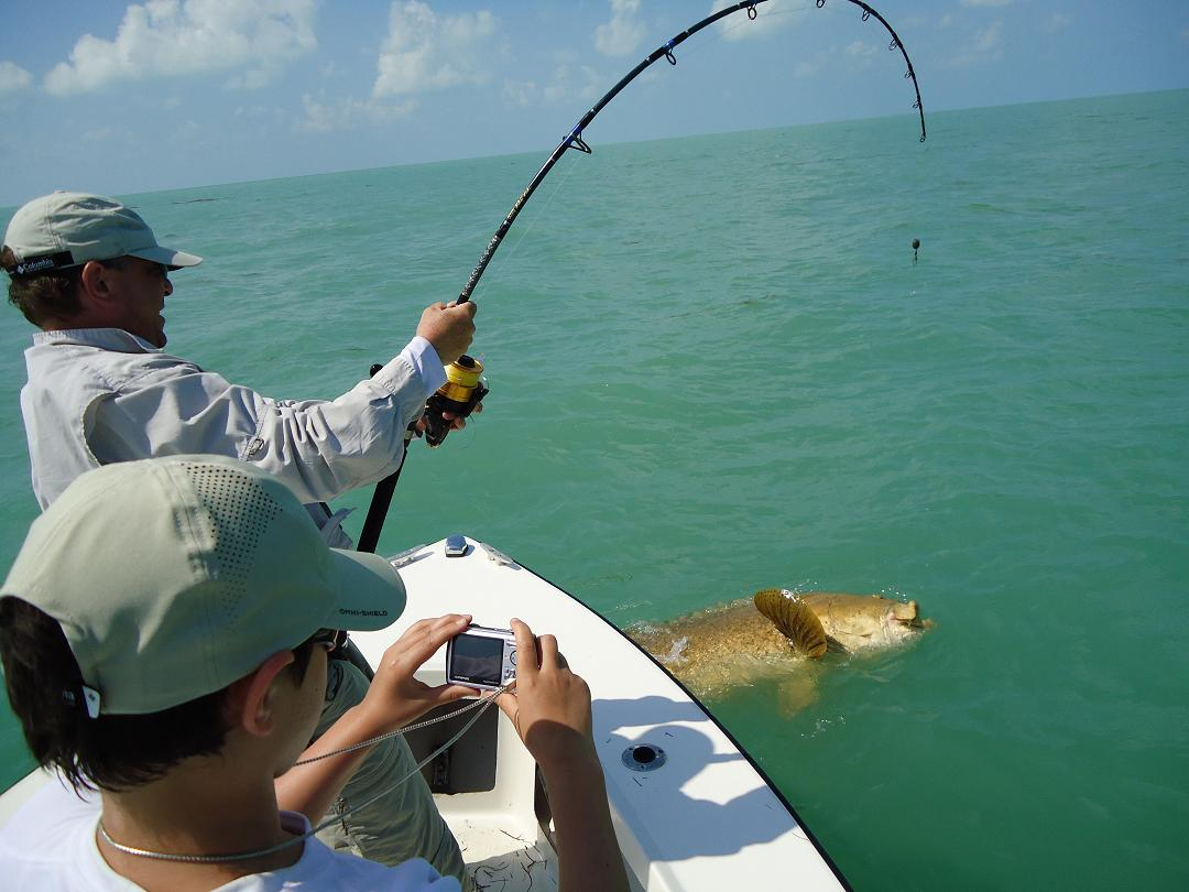 Islamorada fishing reports bud n 39 mary 39 s florida keys for Islamorada florida fishing
